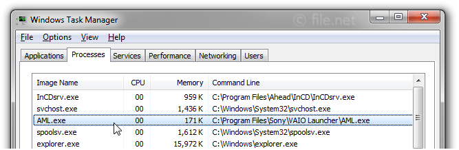 Windows Task Manager with AML