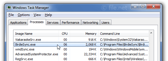 Windows Task Manager with BirdieSync