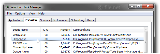 Windows Task Manager with Bkapcs