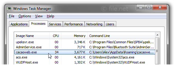 Windows Task Manager with cacaoweb