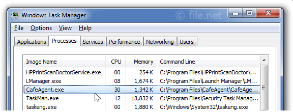 Windows Task Manager with CafeAgent