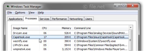New Driver: Asus Eee PC 1215P Netbook CapsHook