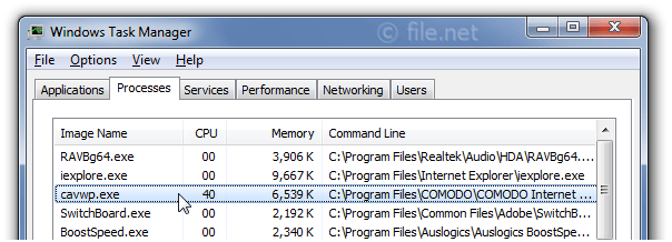 Windows Task Manager with cavwp