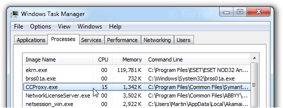 Windows Task Manager with ccProxy