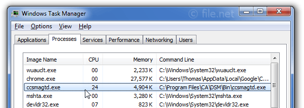 Windows Task Manager with ccsmagtd