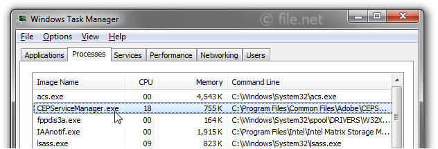 Windows Task Manager with CEPServiceManager