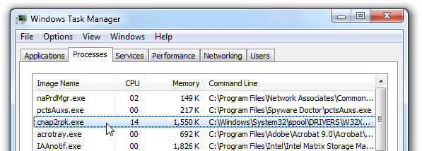 Windows Task Manager with cnap2rpk