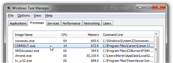 Windows Task Manager with CNMNSUT