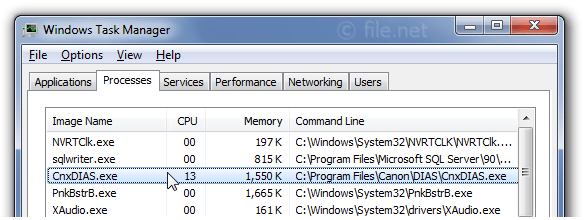 Windows Task Manager with CnxDIAS