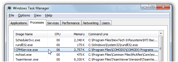 Windows Task Manager with CPMService