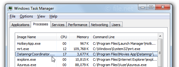 Windows Task Manager with DatamngrCoordinator