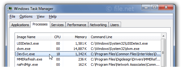 Windows Task Manager with DevSvc