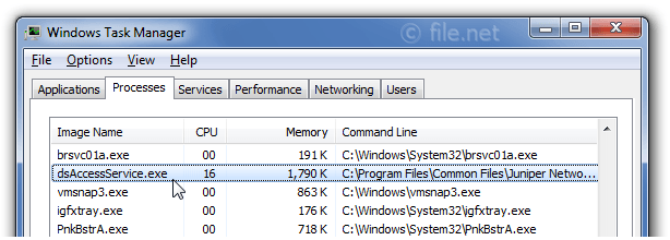 Windows Task Manager with dsAccessService