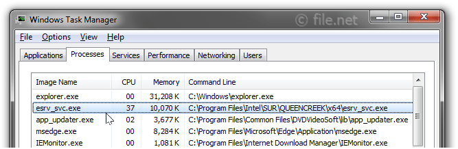 Windows Task Manager with esrv_svc
