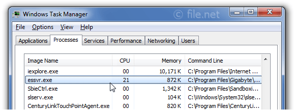Windows Task Manager with essvr
