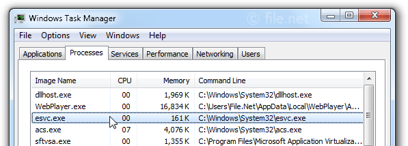 Windows Task Manager with esvc