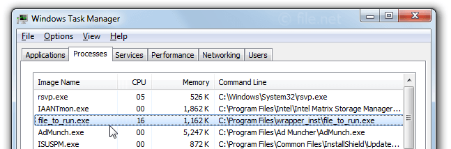 Windows Task Manager with file_to_run