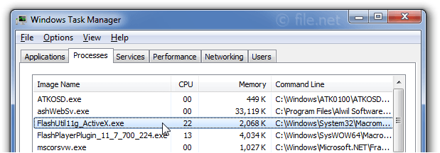 Windows Task Manager with FlashUtil11g_ActiveX
