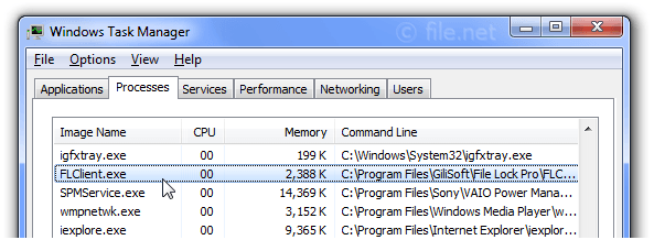 Windows Task Manager with FLClient