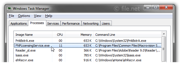 Windows Task Manager with FNPLicensingService