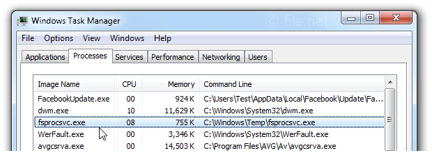 Windows Task Manager with fsprocsvc