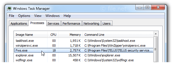 Windows Task Manager with Fws