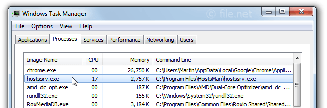 Windows Task Manager with hostssrv