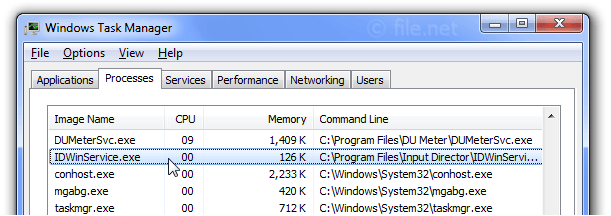 Windows Task Manager with IDWinService