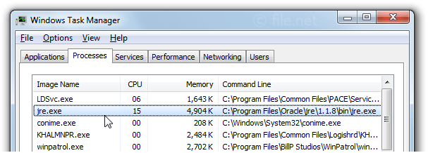 Windows Task Manager with jre
