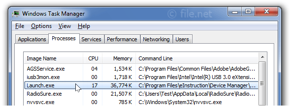 Windows Task Manager with Launch