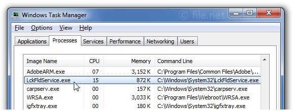 Windows Task Manager with lckfldservice