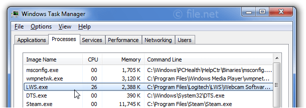 Windows Task Manager with LWS