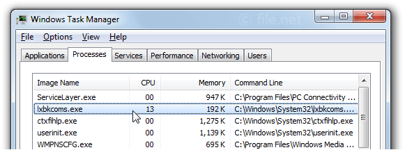Windows Task Manager with lxbkcoms