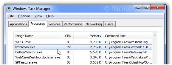 Windows Task Manager with lxdcamon