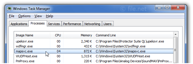 Windows Task Manager with mapsvc