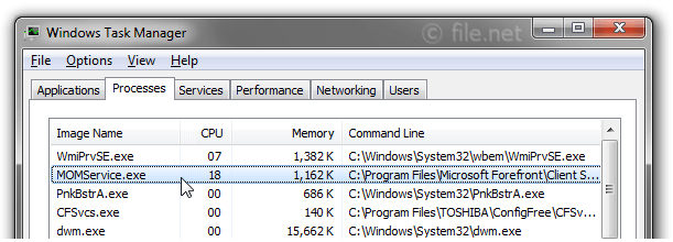 Windows Task Manager with MOMService