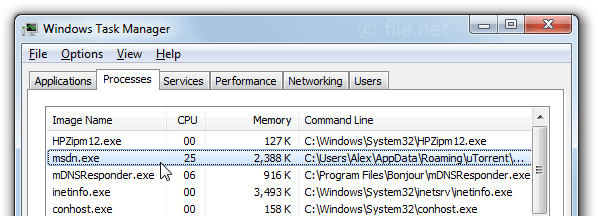 Windows Task Manager with msdn