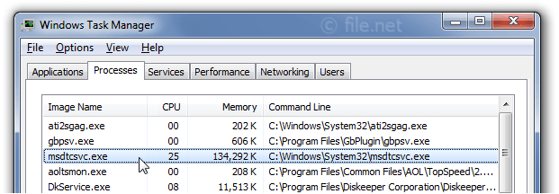 Windows Task Manager with msdtcsvc