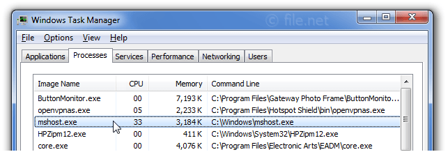 Windows Task Manager with mshost