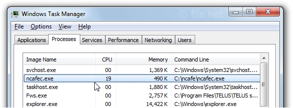 Windows Task Manager with ncafec