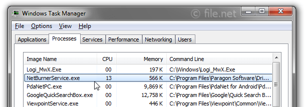 Windows Task Manager with NetBurnerService