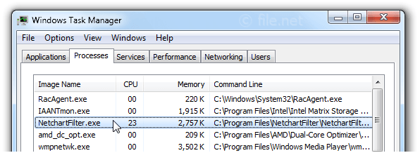 Windows Task Manager with NetchartFilter