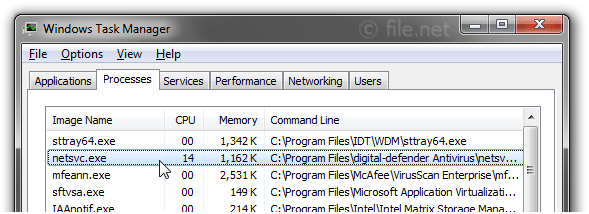Windows Task Manager with netsvc