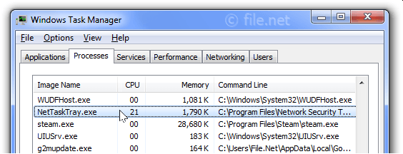 Windows Task Manager with NetTaskTray