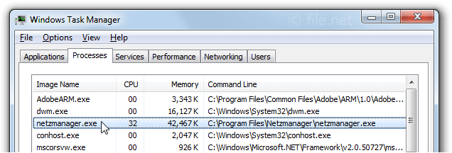 Windows Task Manager with netzmanager