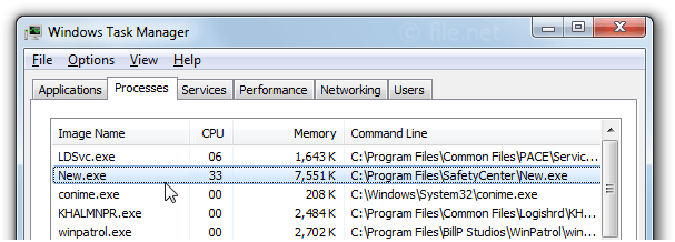 Windows Task Manager with New