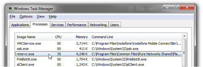 Windows Task Manager with nmsrvc