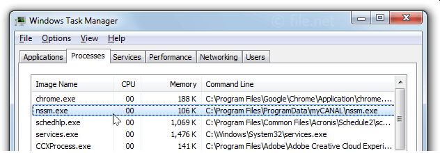 Windows Task Manager with nssm