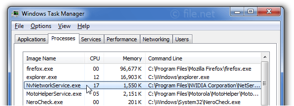 Windows Task Manager with NvNetworkService