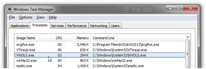 Windows Task Manager with NWDLS